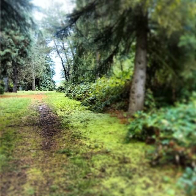 Cascades Gateway Park